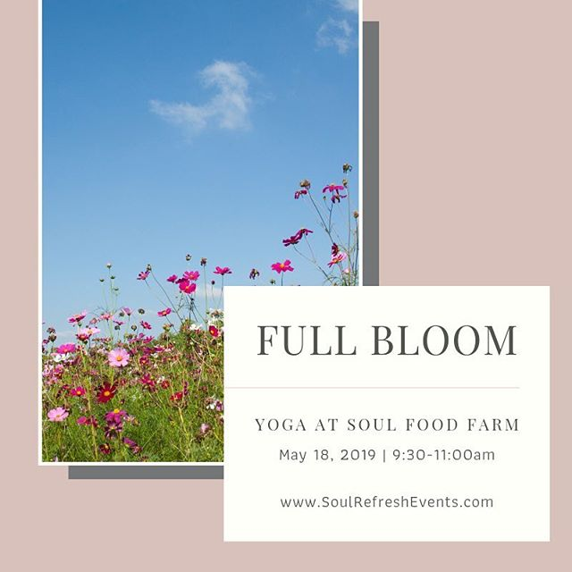Beautiful beings, come join me for an all-levels, full bloom flow with @soul_refresh at @soulfoodfarm this May 18th! We'll embrace the buzzing energy of Mother Nature and focus on full expression of ourselves in our practice. Following yoga and meditation on an outdoor deck, we'll enjoy farm-inspired refreshments. Link in bio and when you purchase your spot by 4/30 use code bloom15 for 15% off! Spaces are limited, reserve your spot today.