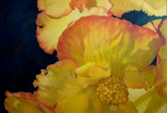 """Begonia Beauty"""