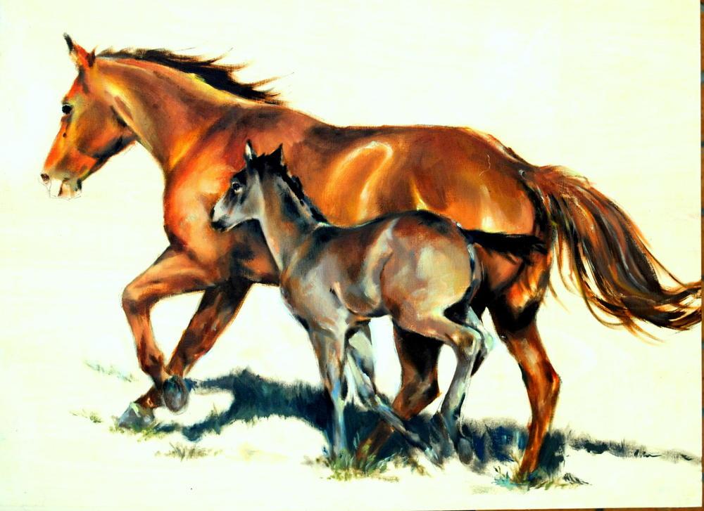Willi Waltrip  Oils on Canvas