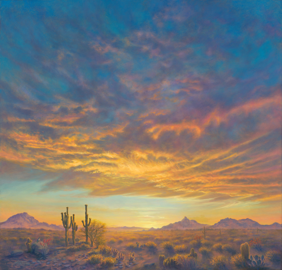 """Sonoran Desert Spring"""