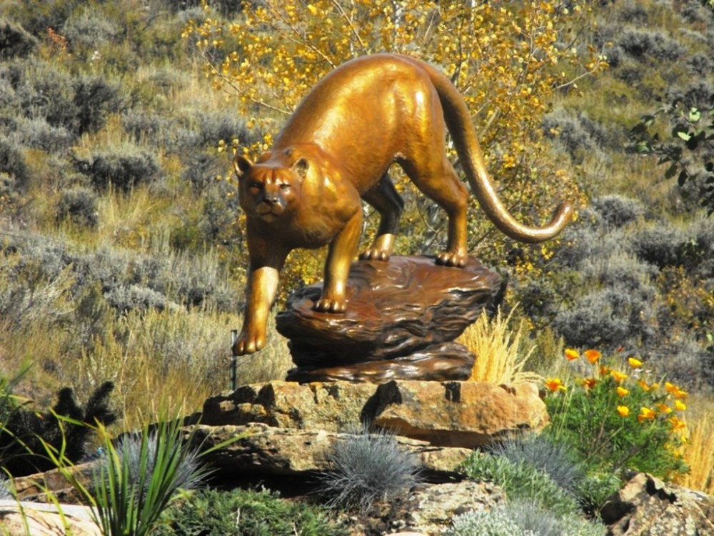 6 Nelson  Mountain Lion.jpg