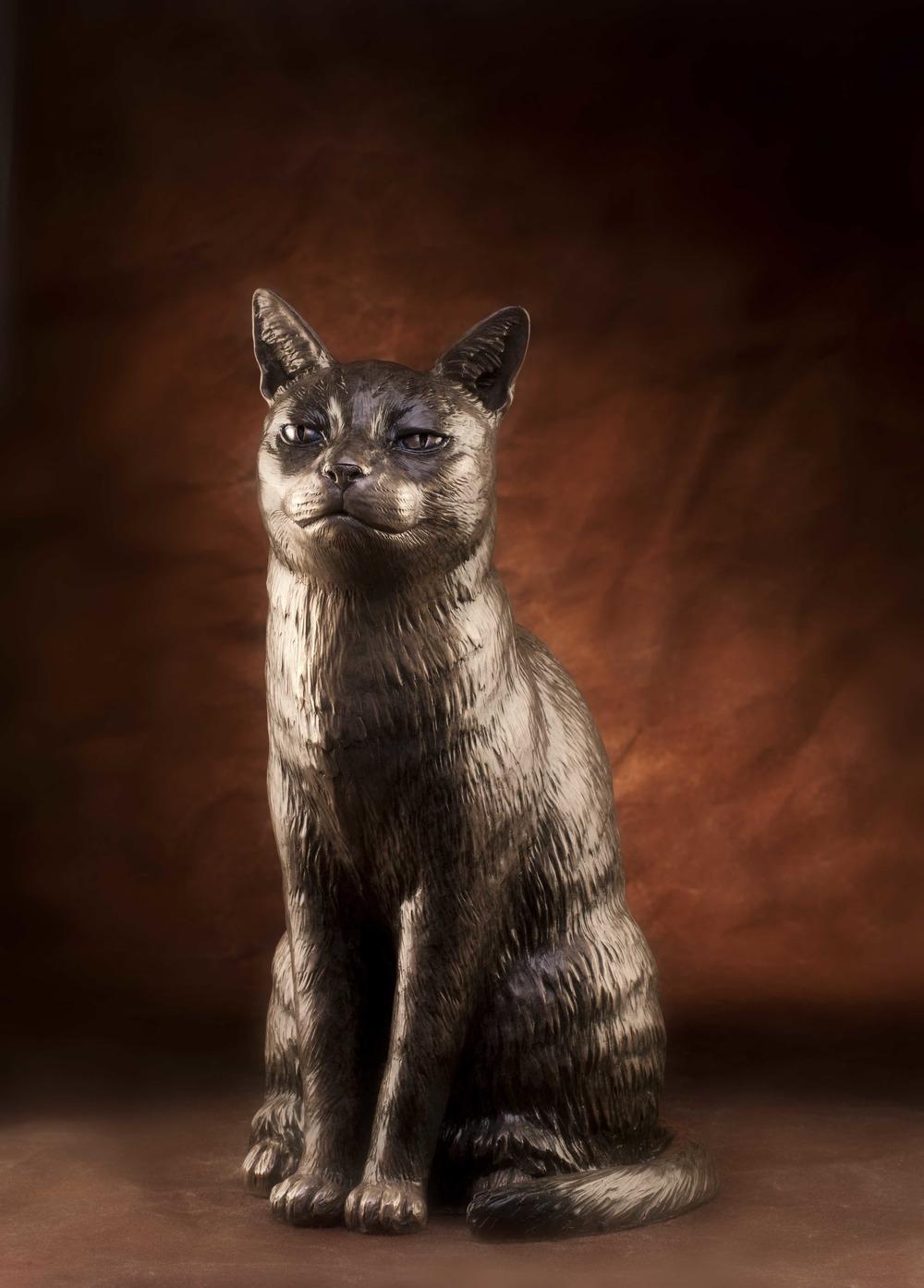 'Felis Domestica'