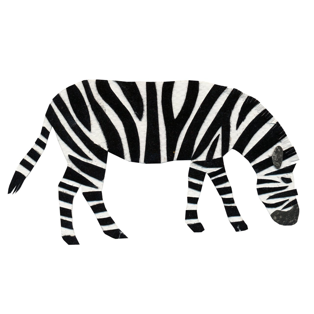 an animal a day Z for Zebra