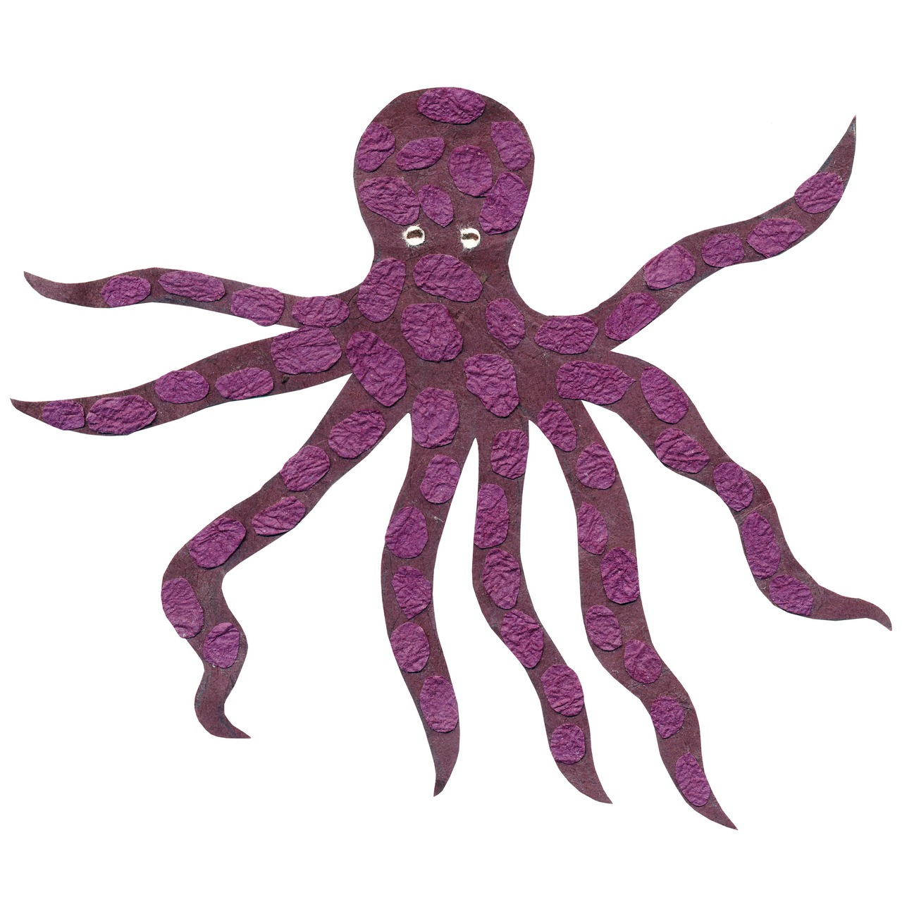 an animal a day    O  for octopus