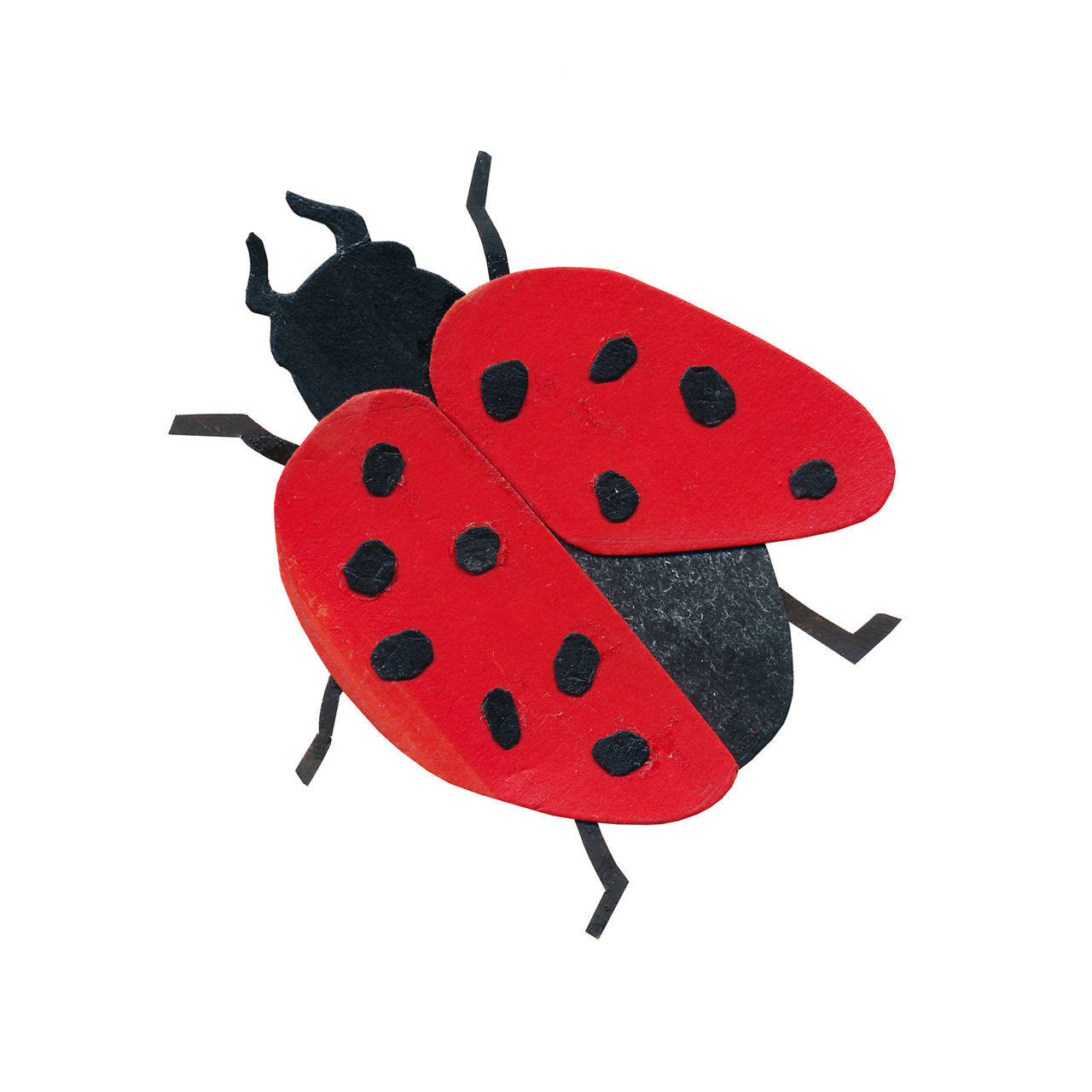 an animal a day    L  for ladybug