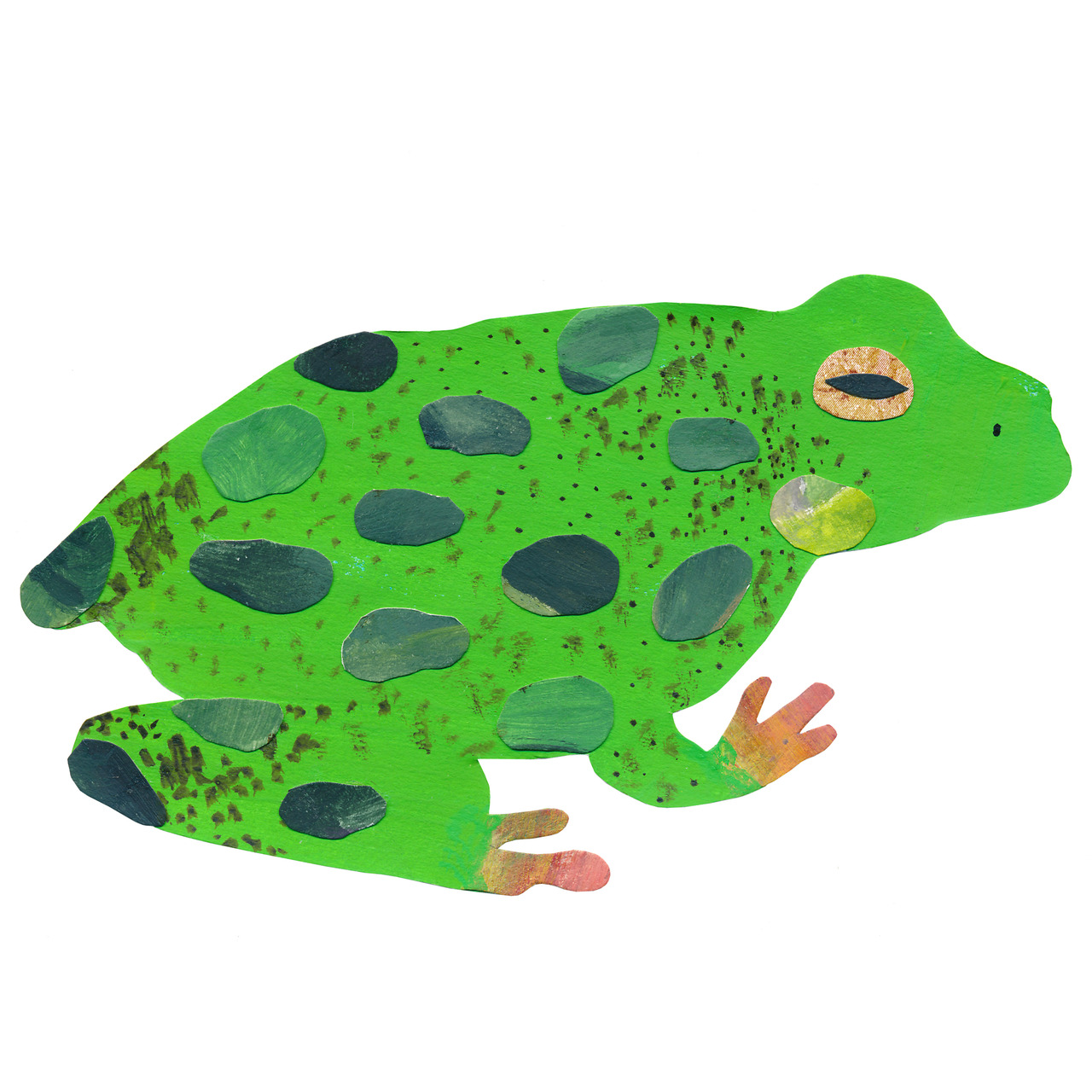 an animal a day F for frog