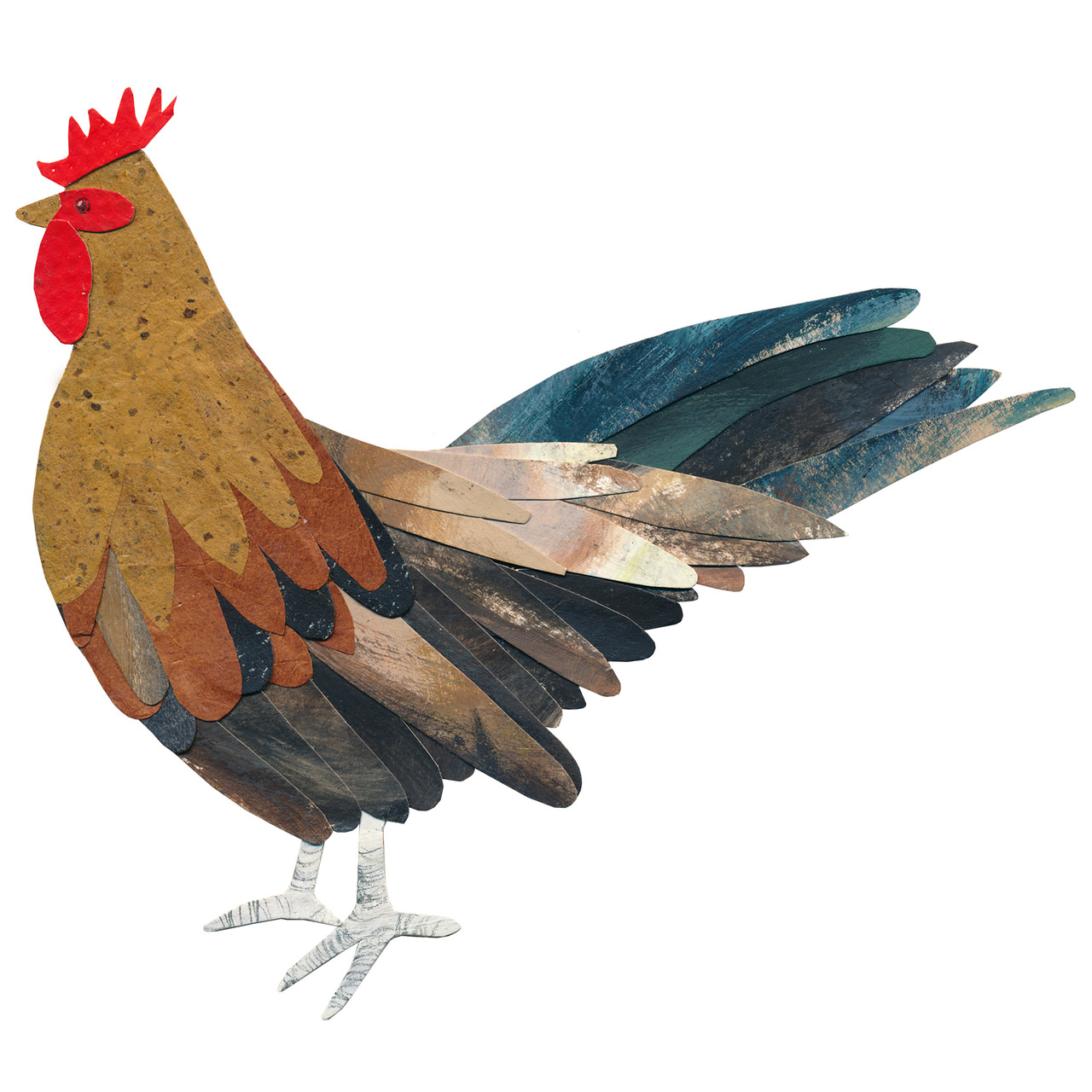 an animal a day    C  for chicken