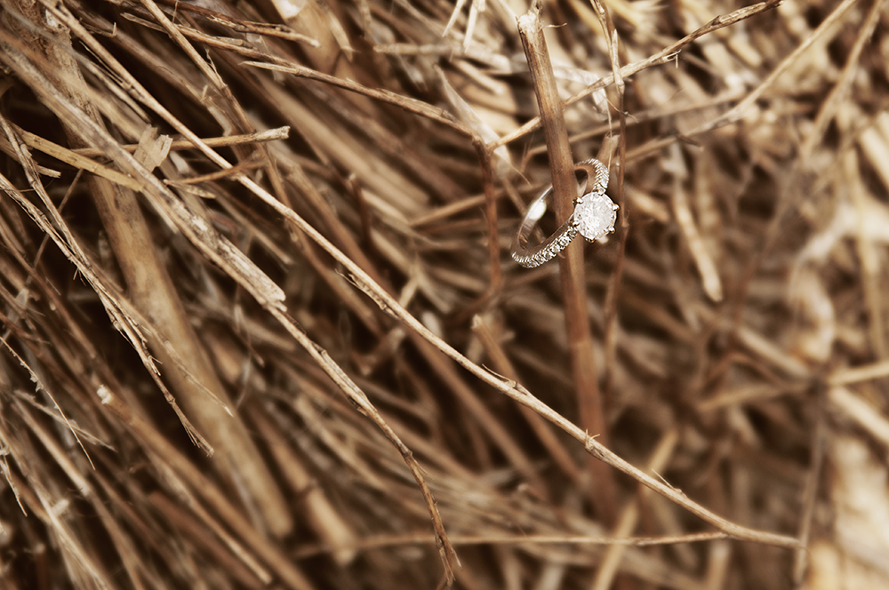 Meg & Mocha ring web.jpg