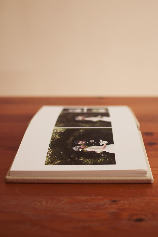 album 6 web.jpg