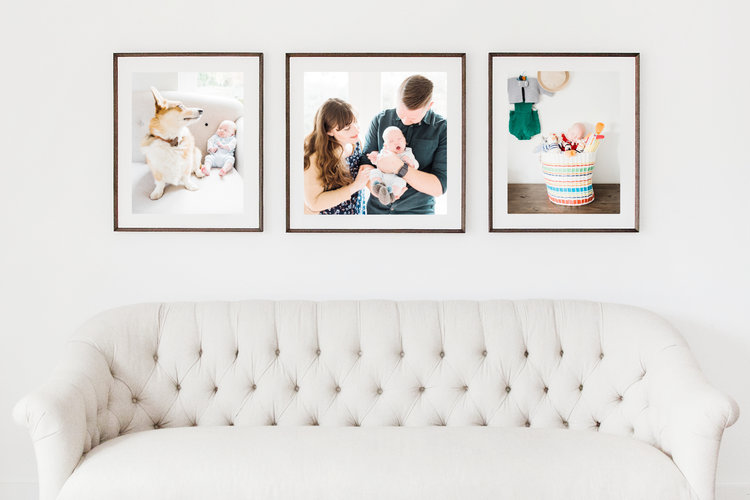 Portrait Sessions — Joanna Briggs Photography