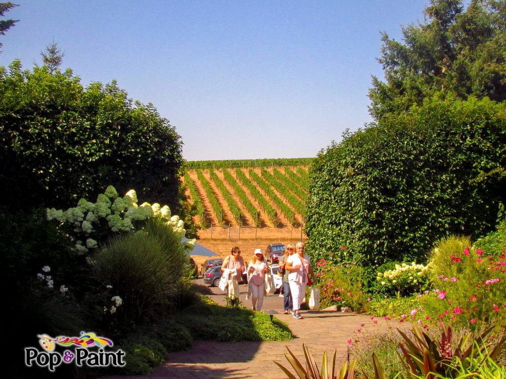 8.18.18 - Day in the Vineyard at WillaKenzie Estates (Class 1) 1.jpg