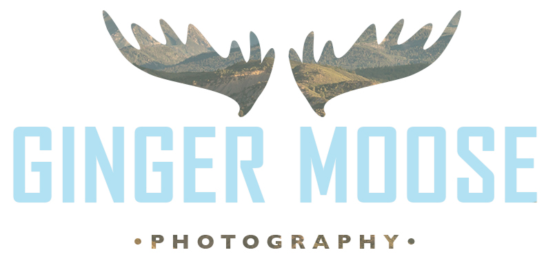 Ginger Moose Photography I Durango Wedding Photographer who brings an authentic style to Colorado Wedding Photography
