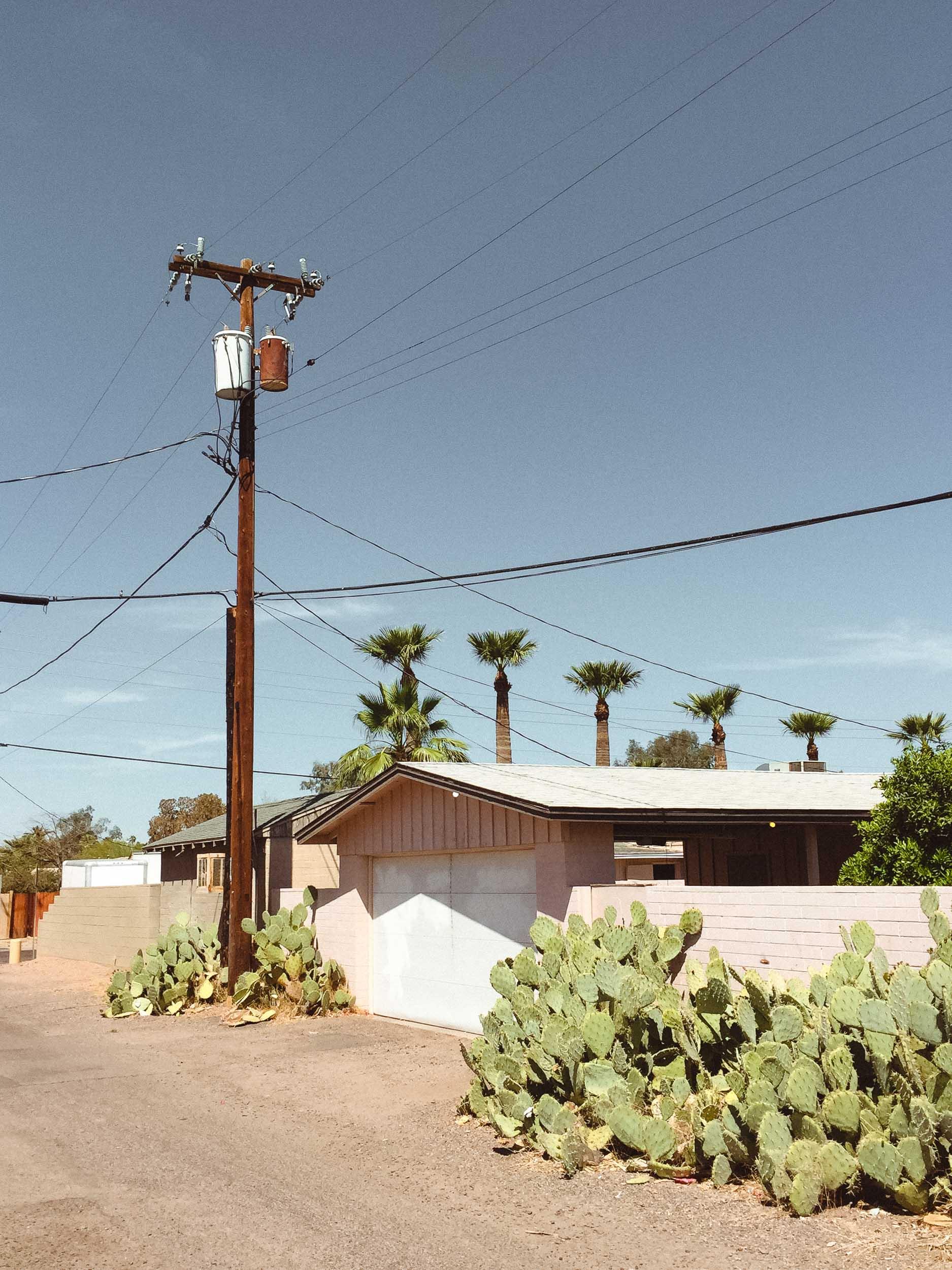 Phoenix — Kyle Niemier