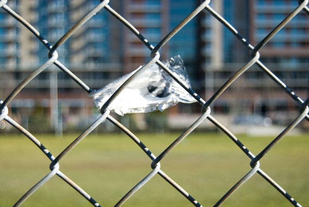 fence 04.jpg