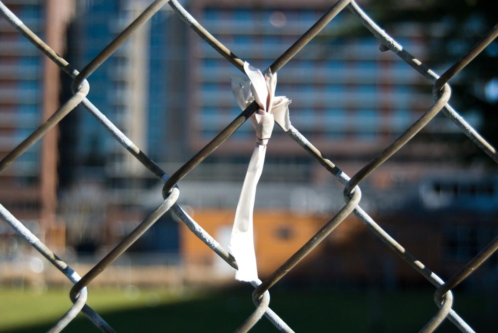 fence 07.jpg