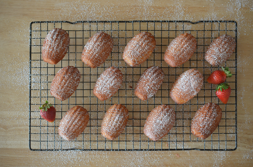 wit+aroma strawberry madeleines