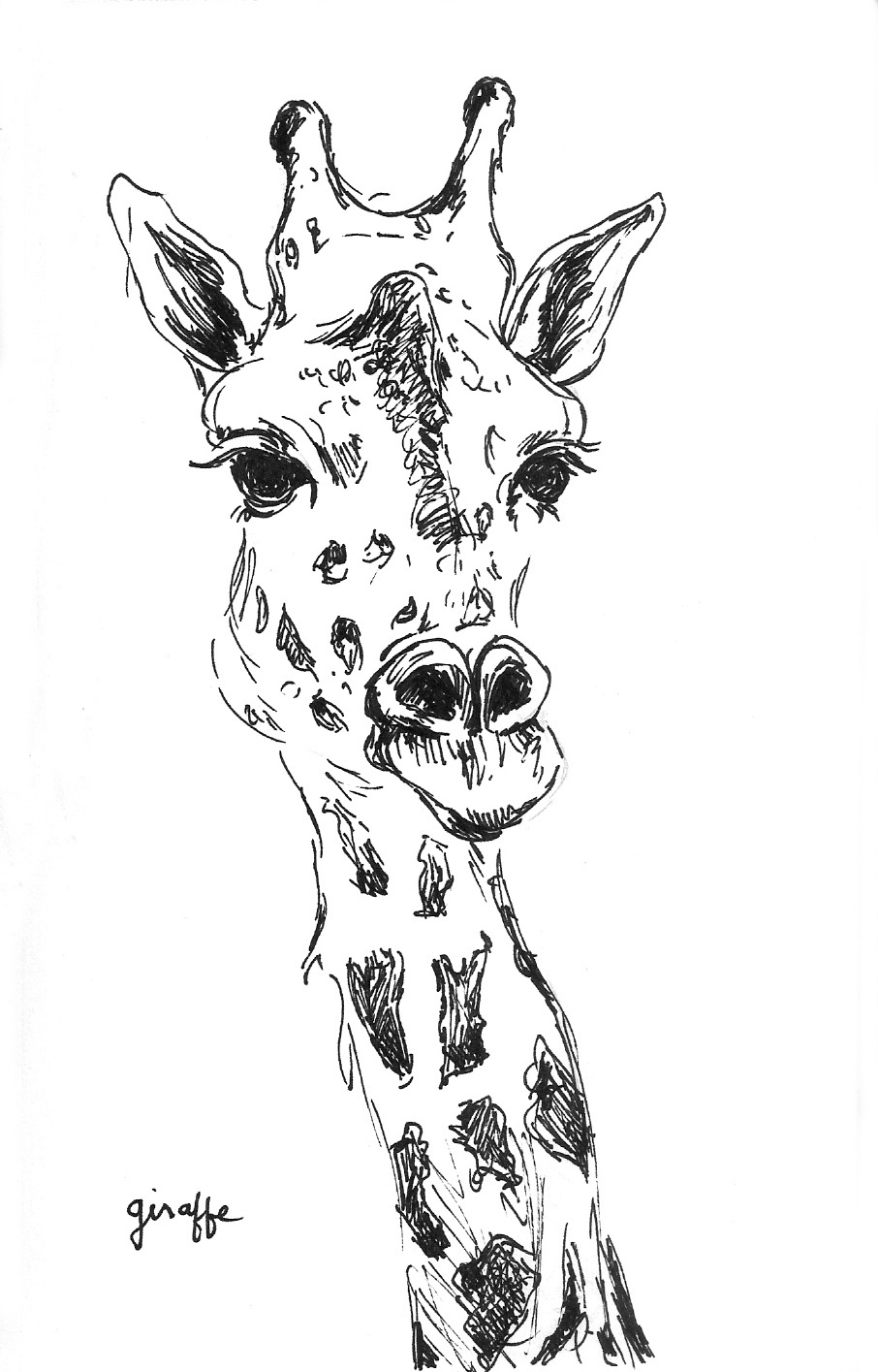 1-giraffe-gloriaho.jpg