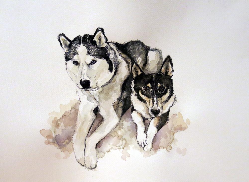 Neeko & Sam