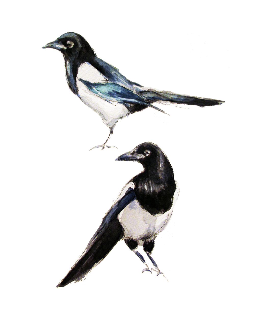 Magpies (ORIGINAL SOLD)