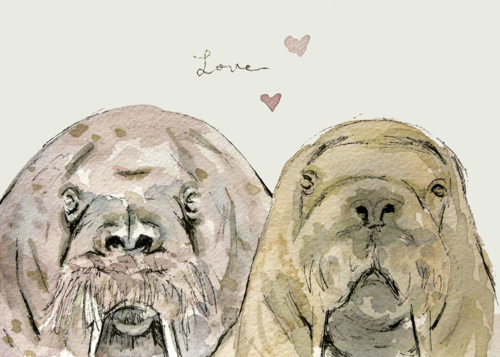 Walrus Love (ORIGINAL SOLD)