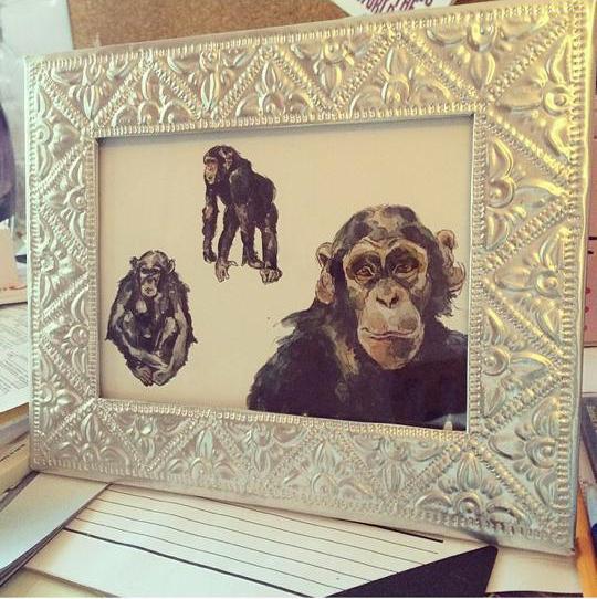 Victoria's chimps