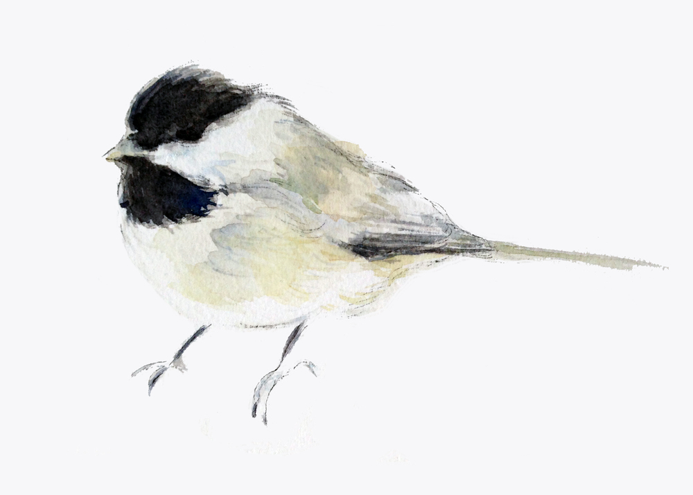 Chickadee (ORIGINAL SOLD)