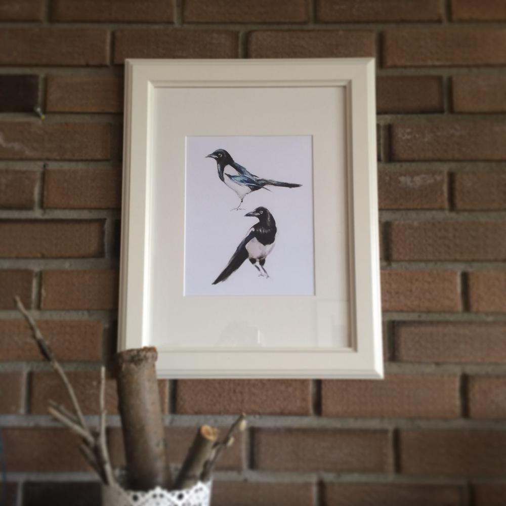 Kristine's magpies