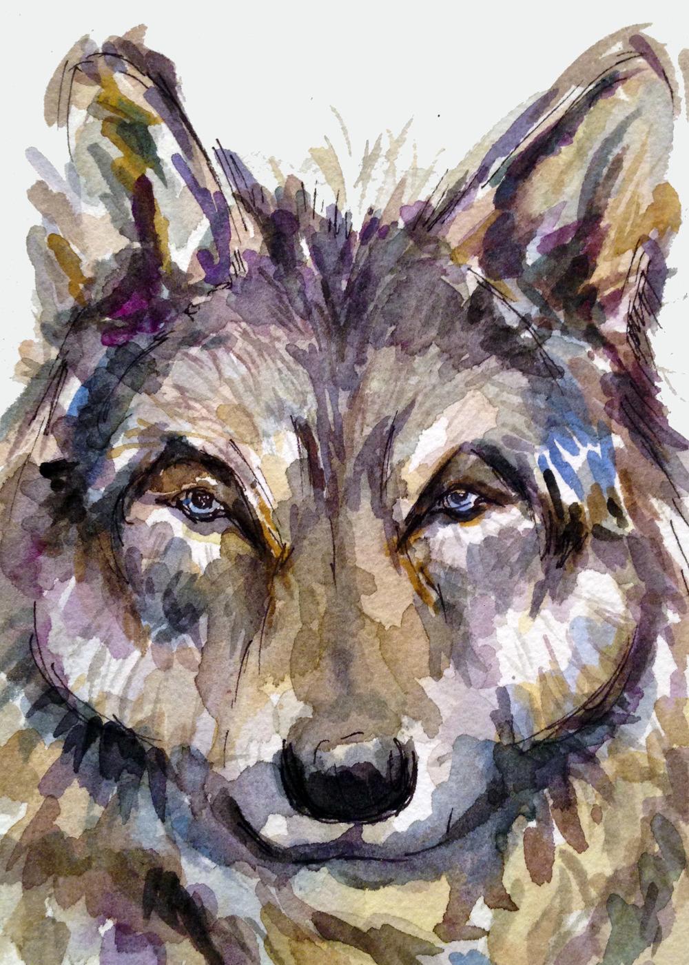 Wolf(ORIGINAL SOLD)