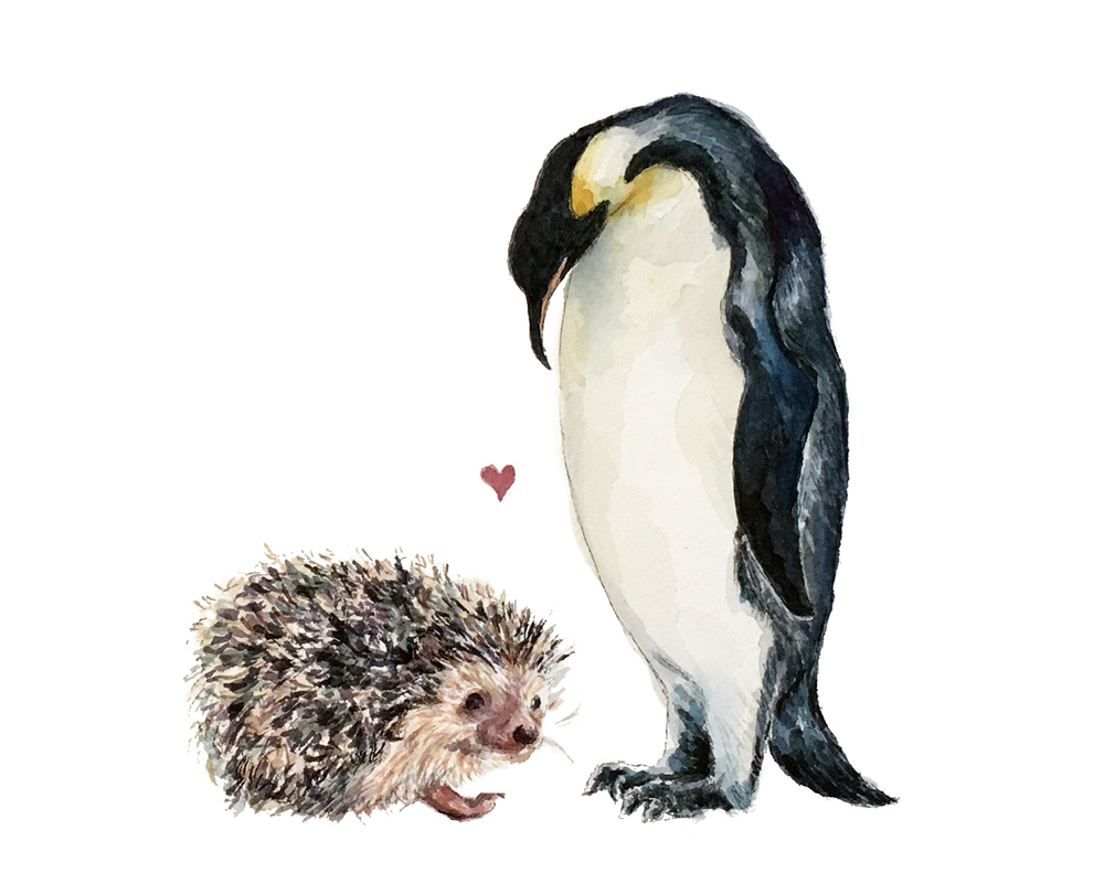 Hedgehog Penguin Love (CUSTOM)