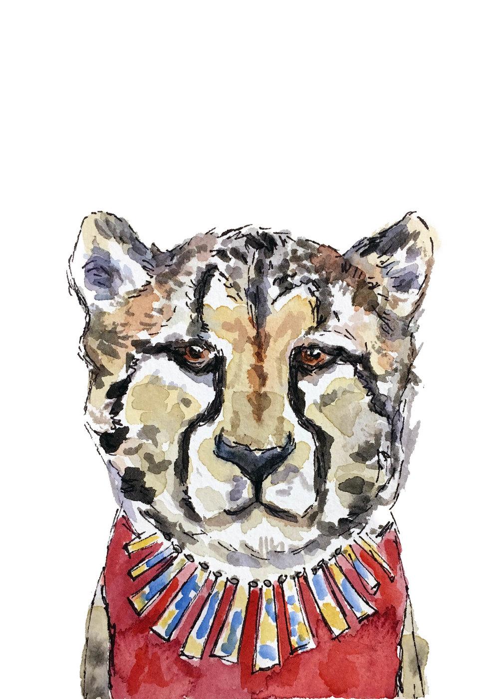 Cheetah-5x7.jpg