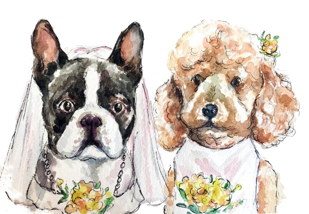 Brides-dogs.jpg