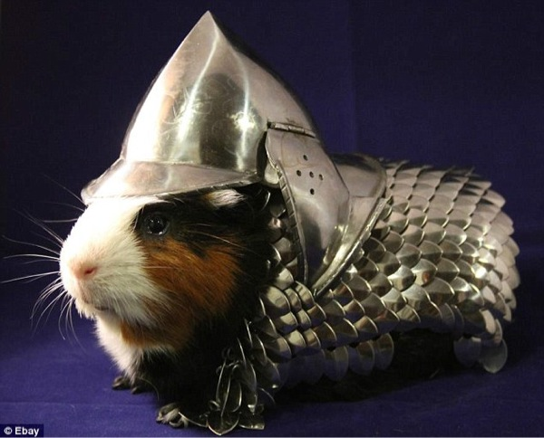 Chainmail for Guinea Pigs - As sold on eBay