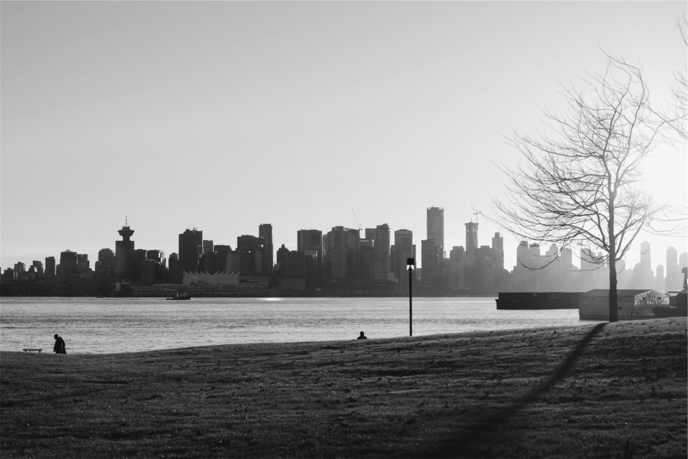 urban_nature_bw.jpg