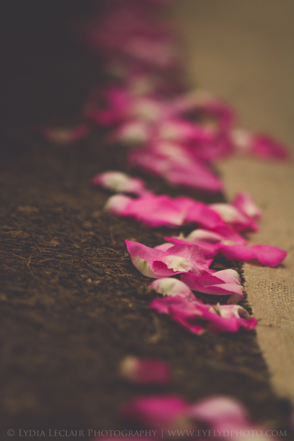 Think through all the special details..... like an aisle lined with rose petals.