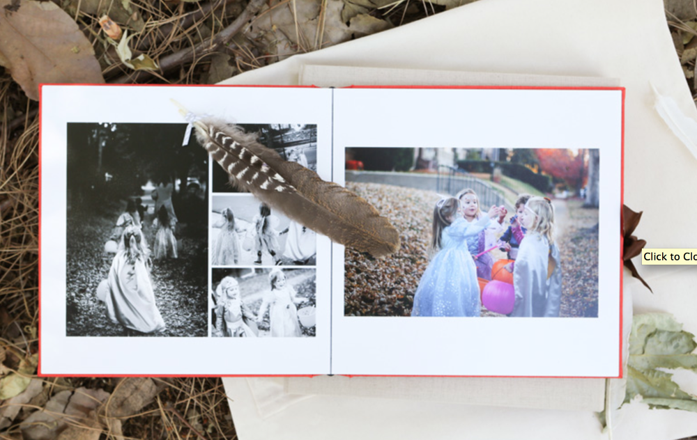 SESSION linen ALBUM:  8x8 {$800}*  6x9 {$600}*  *10 pages/ 20 spreads [20-25 images; $10 per additional image]