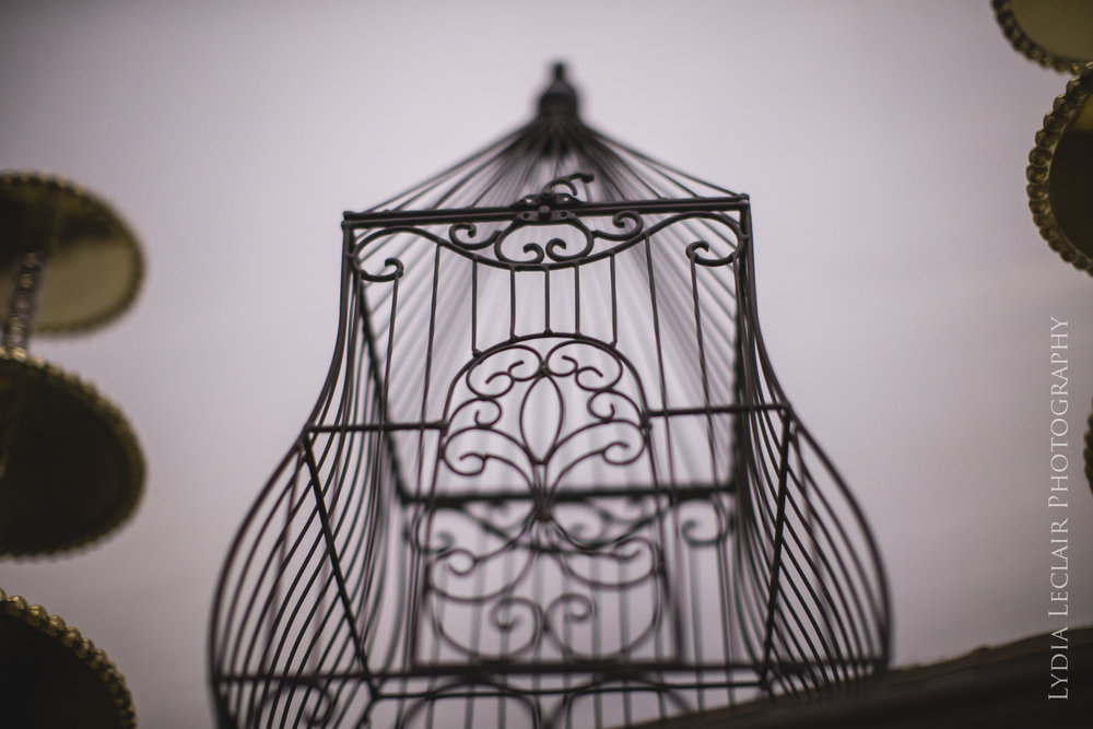 Copy of wedding bird cage cape cod airbnb head shot photos business