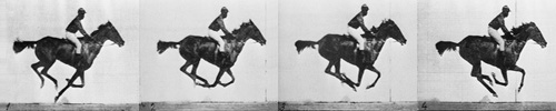 Sequence of a race horse galloping. Photos taken by Eadweard Muybridge, first published in 1887 at Philadelphia