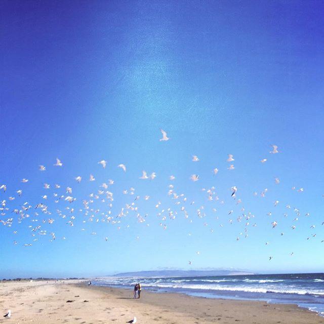 A walk on the beach. #latergram