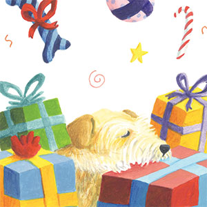Cotswolds Dogs & Cats Home / RSPCA Logo design, map spot illustrations and a set of fund-raising greetings cards.