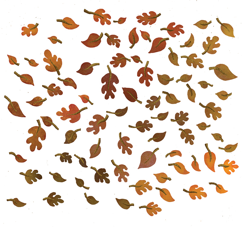 All the individual leaves used in the illustration, also provided as separate elements to the in-house design team at Bristol Old Vic.