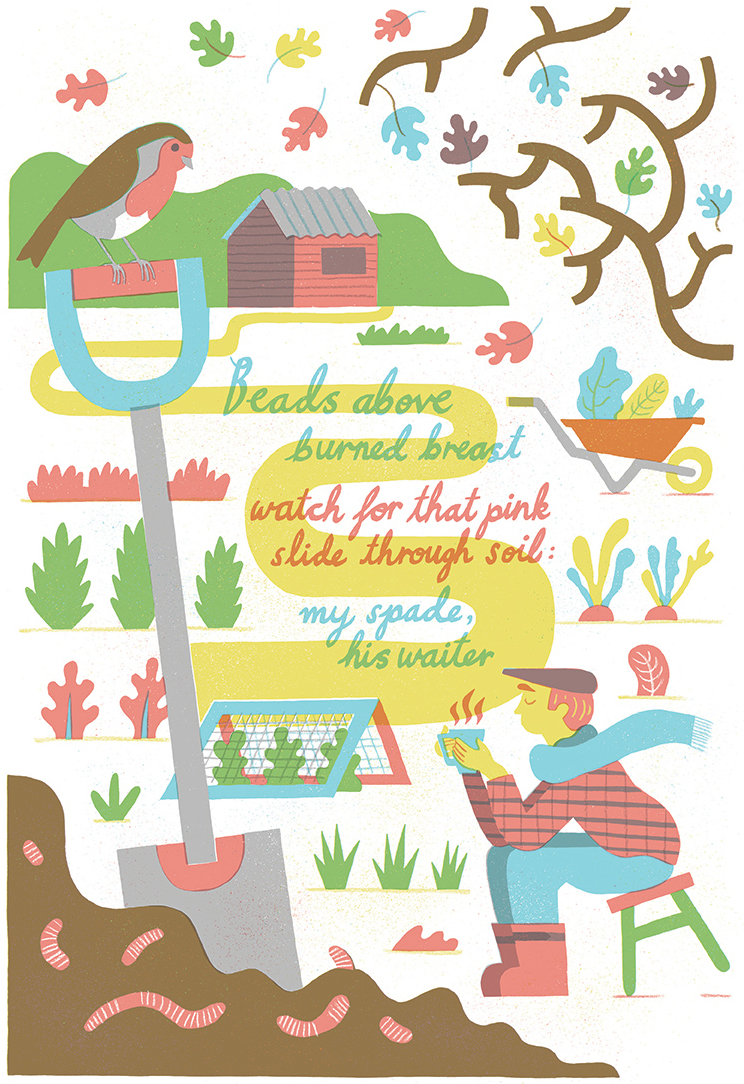 Dave-Bain_Poem_Robin_illustration_web.jpg