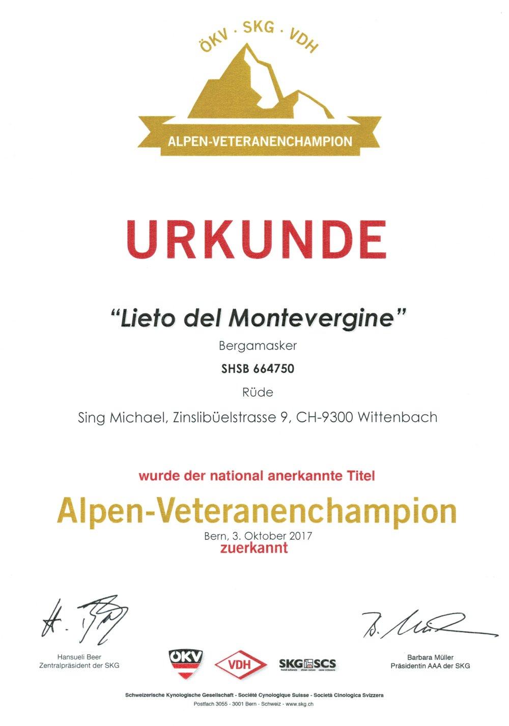 Alpen Veteranen Champion 2017.jpg