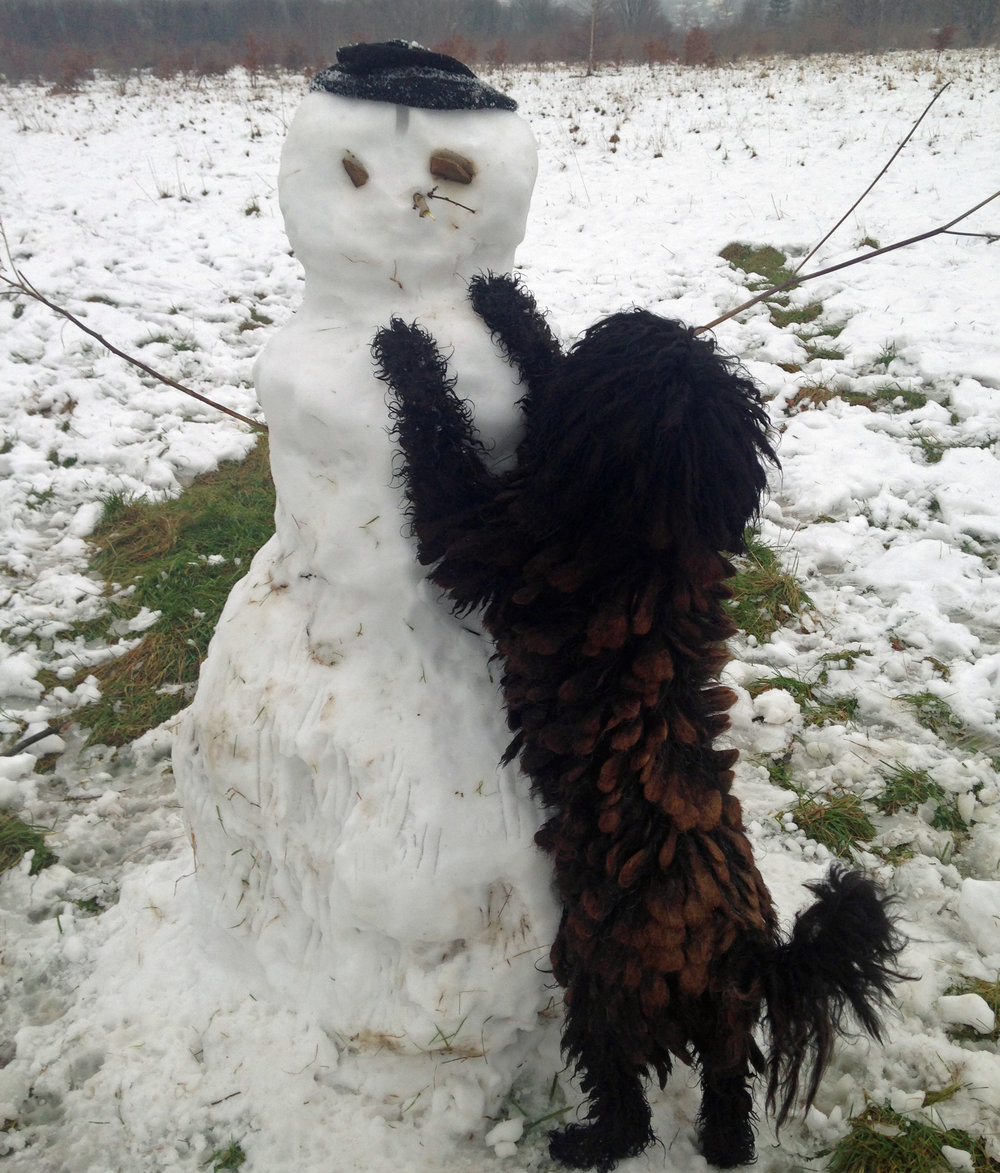 Enzo, legendary with his snowman