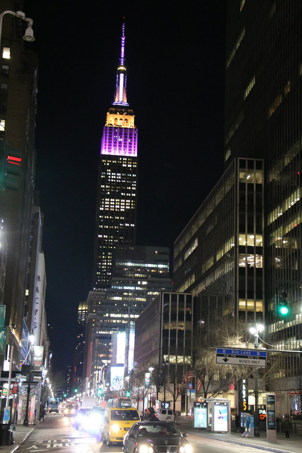 Empire State Building in colors of Westminster Dog Show