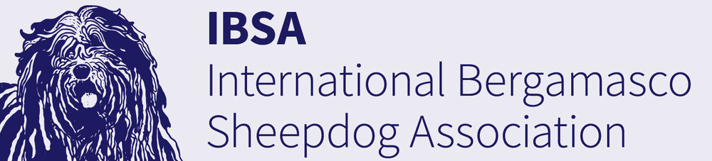 Logo_IBSA_Text.jpg