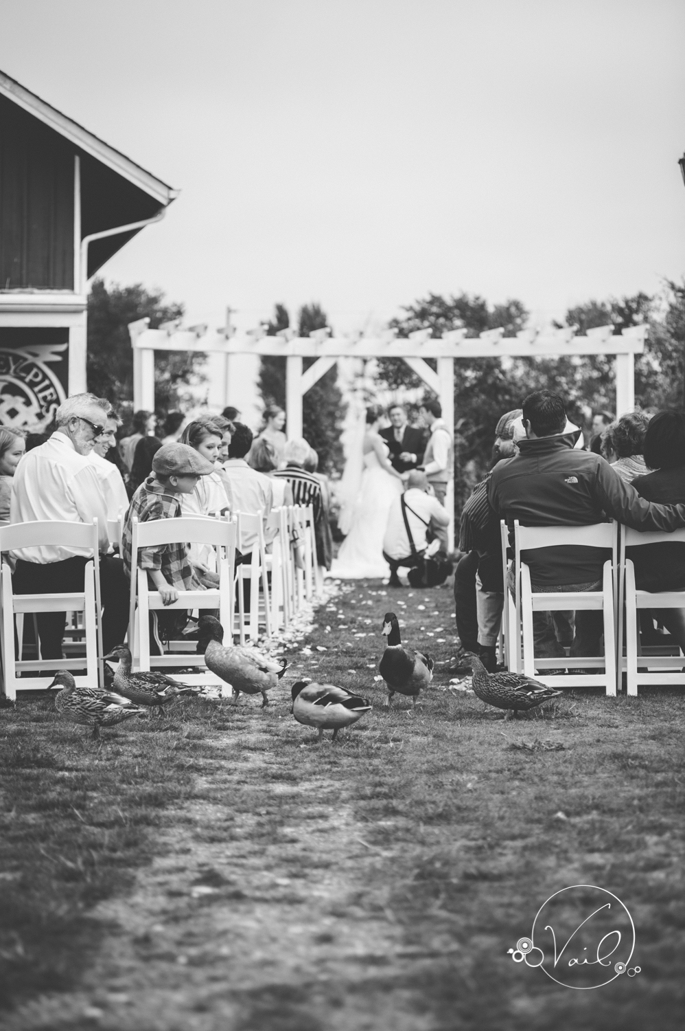 Greenbank Farms Whidbey Island wedding-30.jpg