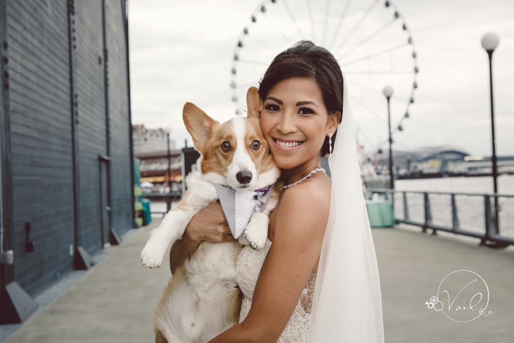 Seattle Aquarium, Seattle Center, The Great Wheel, Seattle Wedding day-52.jpg