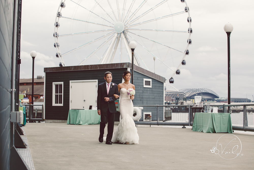Seattle Aquarium, Seattle Center, The Great Wheel, Seattle Wedding day-62.jpg