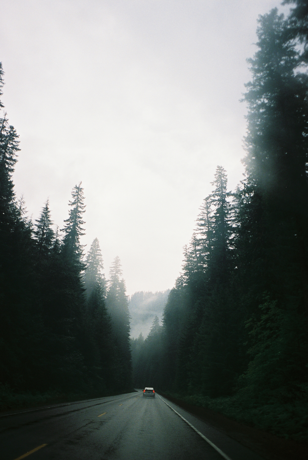 A misty drive in Oregon // Pacific Northwest