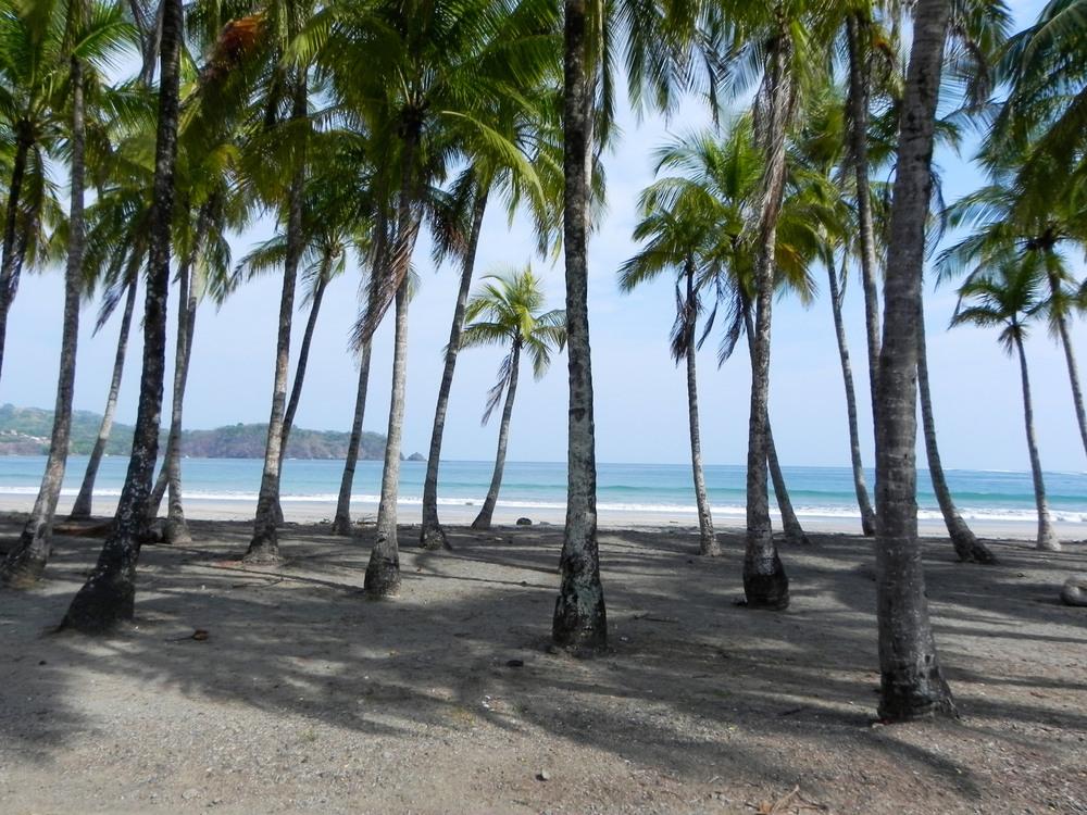Playa Carillo, Costa Rica ©Ty Govaars